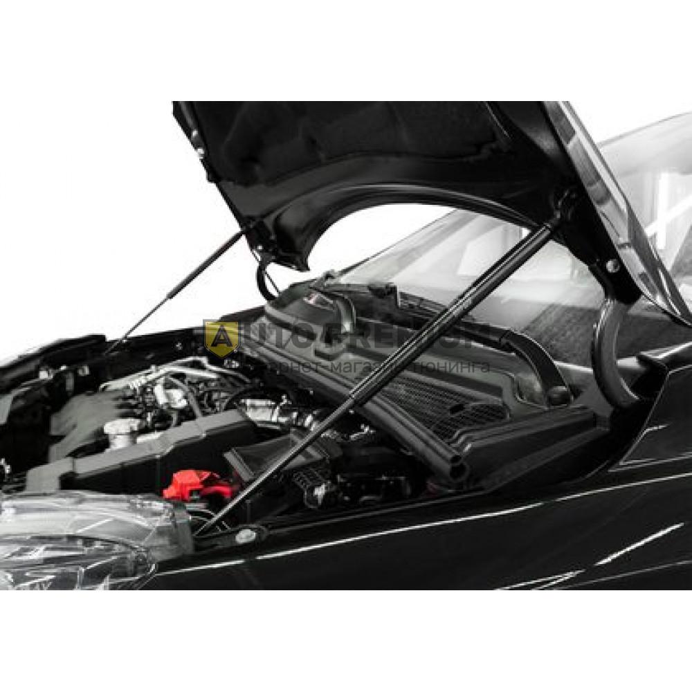 Амортизаторы (упоры) капота «Rival» для Lada Xray хэтчбек 5-дв., Cross 2015-2019